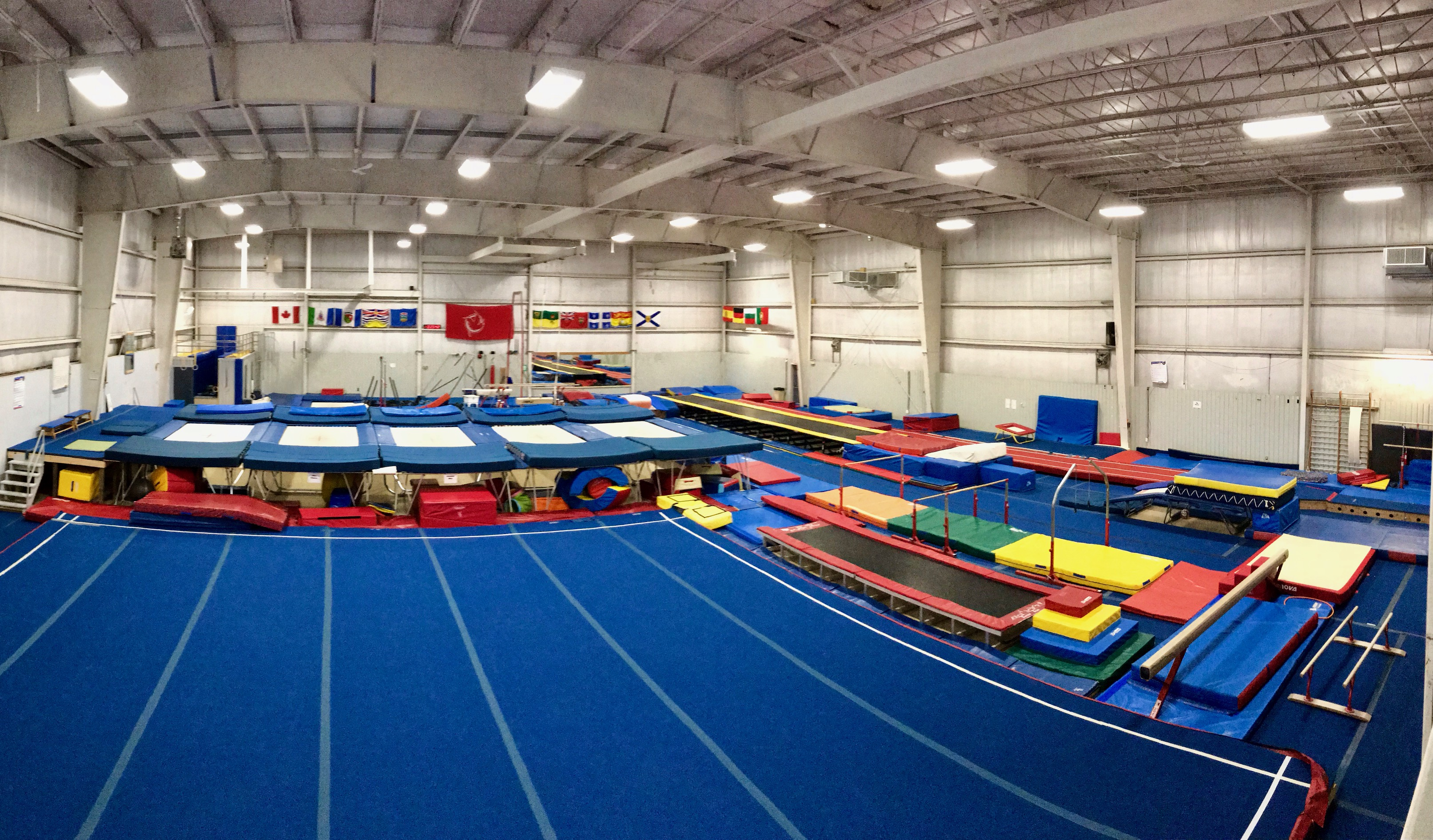 Recreational & Competitive gymnastics