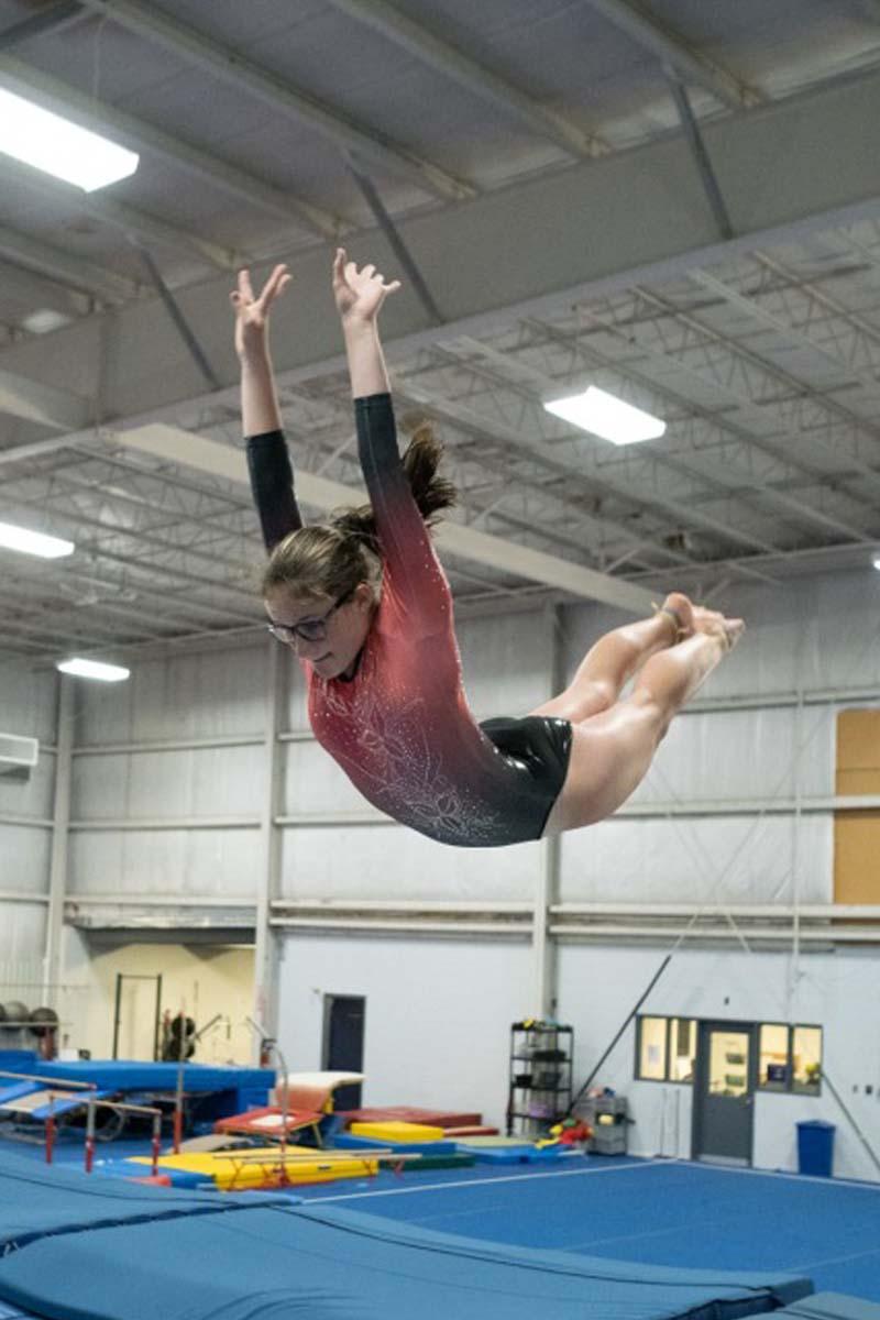 recreational gymnastics hamilton